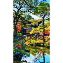 Карбоновый обогреватель Трио Японский сад